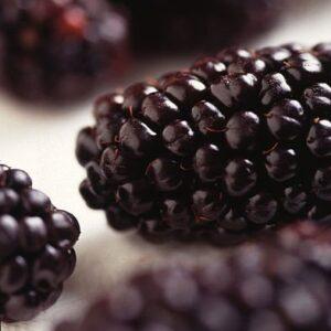 Blackberry Black Satin - PB5/6.5 $13.95