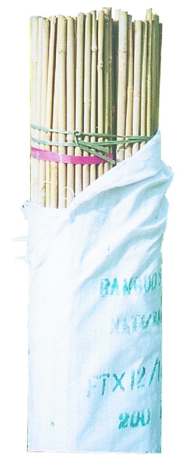 Bamboo Stakes 5ft,150cm (12-14mm) 10 Pack