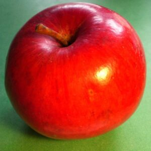 Apple Double Red Wealthy