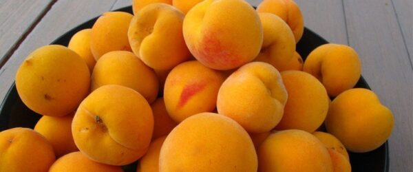 $20 For 5kg Of Golden Queen Peaches 2